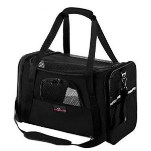 Aivituvin Soft-Sided Pet Travel Carrier
