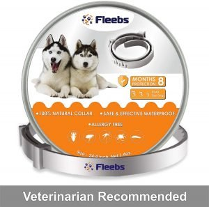 Fleebs Collar Dog Prevention