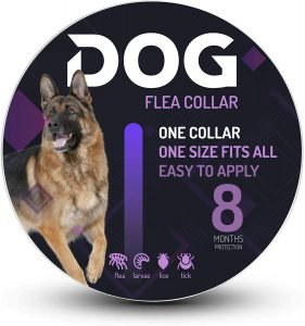 RACXERS Dog Collar Prevention for Dogs